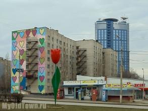 Художественная роспись ''Сердечки'' и красный тюльпан на улице Хиросимы,  дом 16.  Фото Волгограда