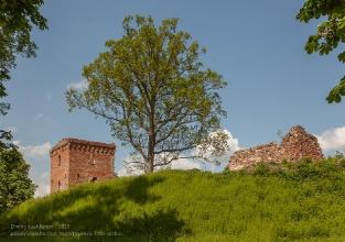 Руины замка Грос Вонсдорф. Вид с дороги