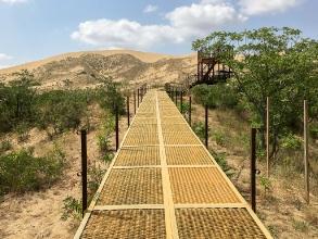 Тропа для подъема на вершину бархана Сарыкум. Дагестанский заповедник