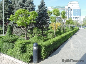Сквер на Коммунистической. Весна 2016 года. Фото Волгограда