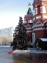 Настоящая елка перед входом в Казанский собор (растет на этом месте)