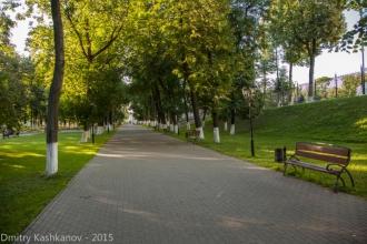 Аллея парка имени А.С.Пушкина. Фото Владимира
