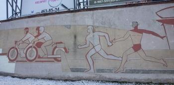 Стадион Химик