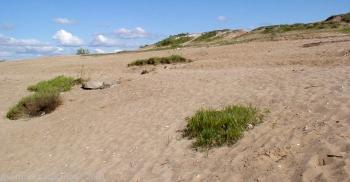 Песчаный пляж на улице Волжской набережной. Старое фото