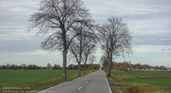Дорога в Правдинск