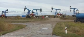 Нефтяные качалки близ Правдинска Калининградской области
