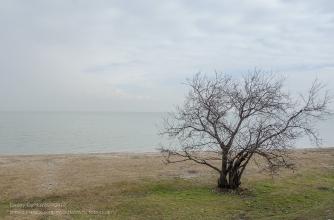 Ейск. Пустой зимний пляж на Азовском море