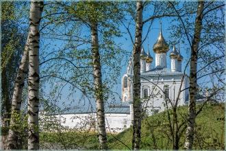 Золотые купола и белые березы. Фото Гороховца