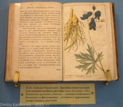 Врачебное веществословие или описание целебных растений. 1783 год. Фото